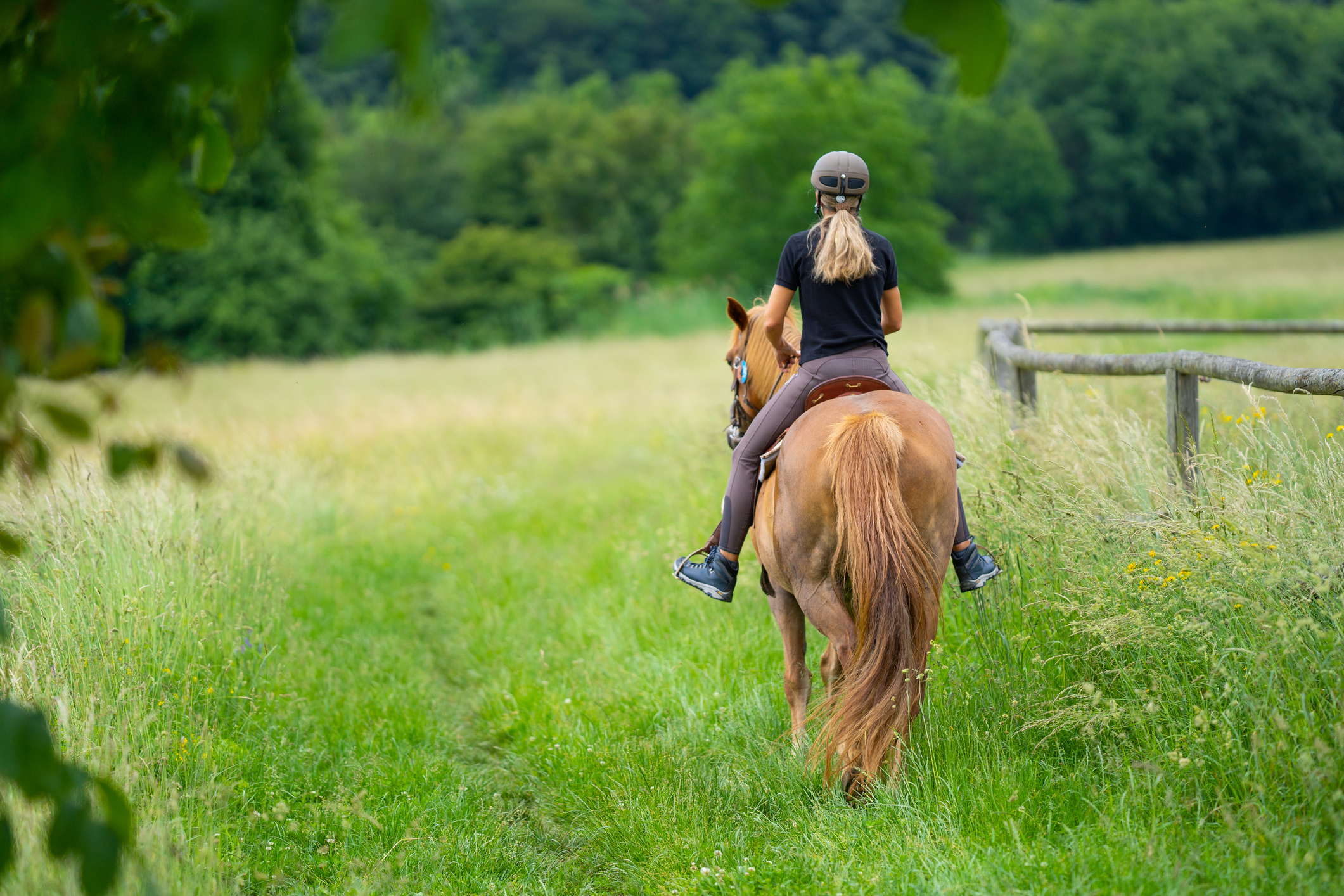 horseback riding near Alexandria