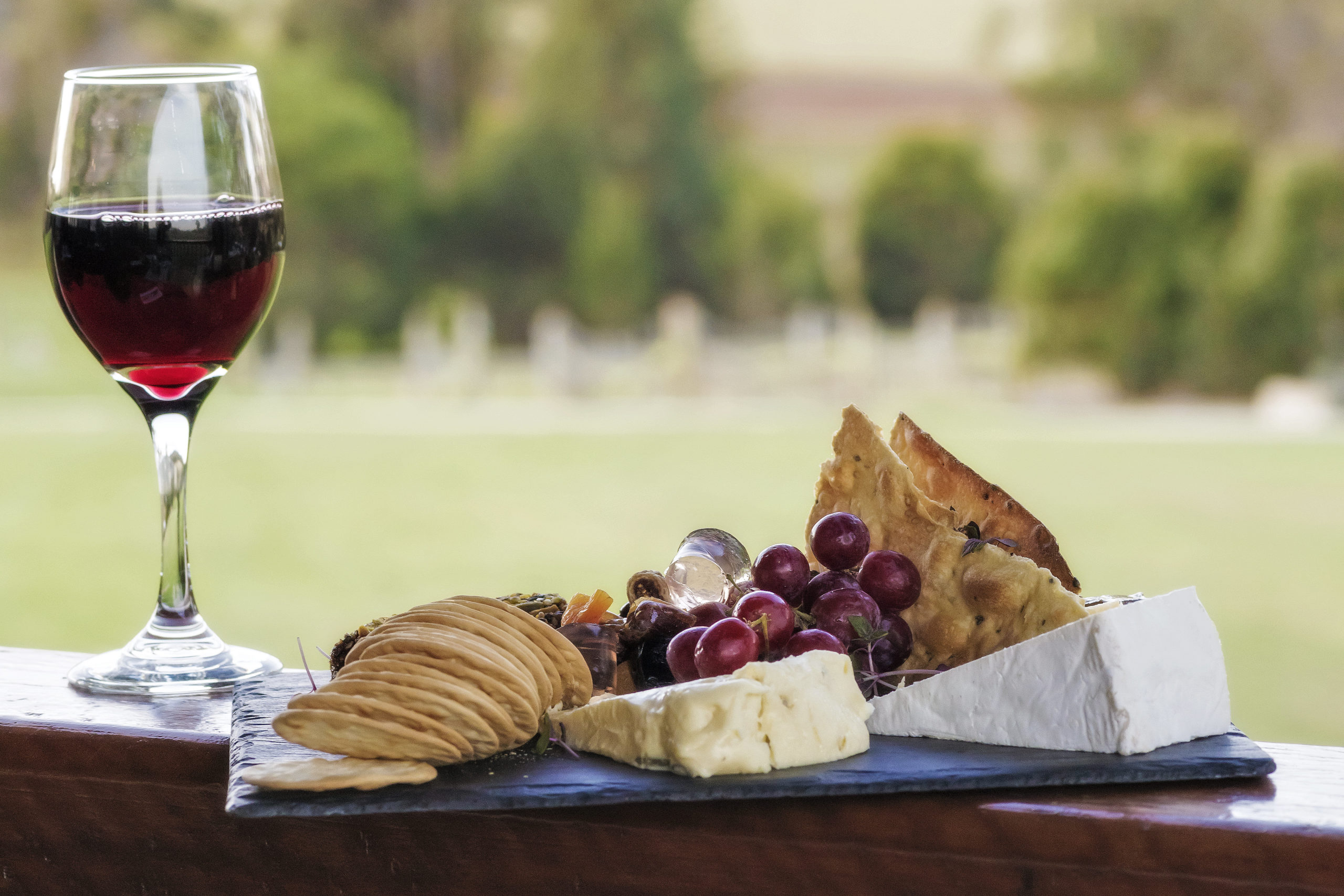 cheese tray with wine outside.